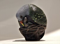 'Fruit Dove' bronze sculpture by Nora Shayeb